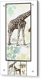 Forest Animals Group Suitable For Hanging Frames Acrylic Print