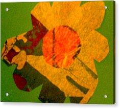 Forest Acrylic Print by Dorothy Rafferty