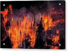 Forest Fire Acrylic Print by Kari Greer/science Photo Library