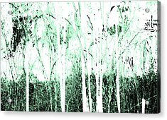 Forest For The Trees Acrylic Print by Lenore Senior