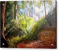 Forest Glade Acrylic Print by Heather Matthews