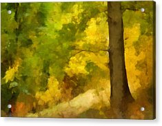 Autumn Forest Impression Acrylic Print by Lutz Baar