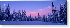 Forest In Winter, Dalarna, Sweden Acrylic Print by Panoramic Images
