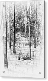 Forest In Winter Acrylic Print by Tom Mc Nemar