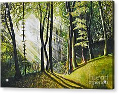 Forest Oil Painting Acrylic Print by Maja Sokolowska