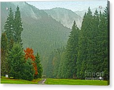 Forest Acrylic Print by Nur Roy
