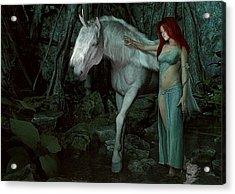 Forest Of Enchantments Acrylic Print by Maynard Ellis