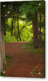 Acrylic Print featuring the photograph Forest Path by Brad Brizek