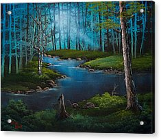 Moonlit River Acrylic Print by C Steele