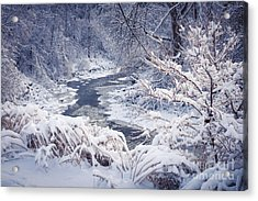 Forest River In Winter Snow Acrylic Print by Elena Elisseeva