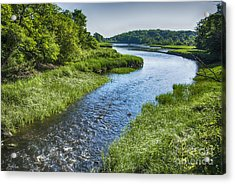 Forest River  Acrylic Print