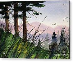 Forest Splendor Acrylic Print by James Williamson