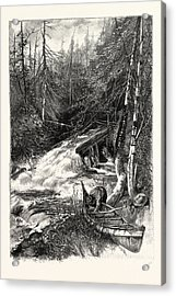 Forest Stream, And Timber Slide, Canada Acrylic Print by Canadian School