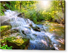Forest Stream And Waterfall Acrylic Print by Alexey Stiop