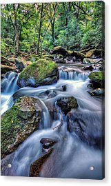 Acrylic Print featuring the photograph Forest Waterfall by John Swartz