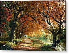 Forever Autumn Acrylic Print by Dominic Davison