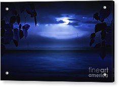 Forever Blue Acrylic Print by Tom York Images