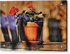 Acrylic Print featuring the photograph Forever Flower by Kandy Hurley