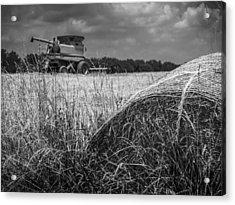 Forgotten Harvest Acrylic Print