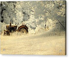 Forgotten Harvest Acrylic Print by Luke Moore