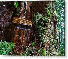 Forgotten Jar Acrylic Print