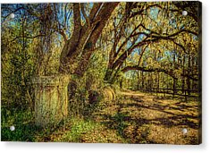 Forgotten Under The Oaks Acrylic Print