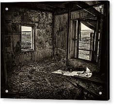 Forgotten Acrylic Print by Wayne Wood