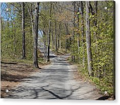 Fork In The Road Acrylic Print by Catherine Gagne