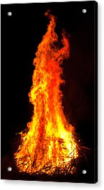 Forked Tongue Acrylic Print by Claus Siebenhaar