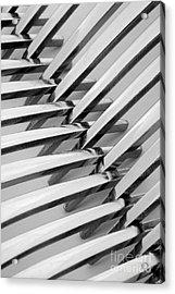 Forks I Acrylic Print by Natalie Kinnear