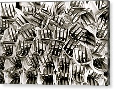 Forks Acrylic Print by Kim Pippinger