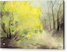 Forsythia In Central Park Watercolor Landscape Painting Acrylic Print by Beverly Brown