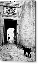 Fort Entrance Gate Acrylic Print by Jagdish Agarwal