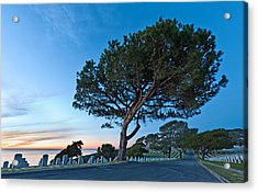 Fort Rosecrans National Cemetery Acrylic Print by Alexis Birkill