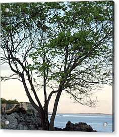 Fort Williams Twilight Acrylic Print