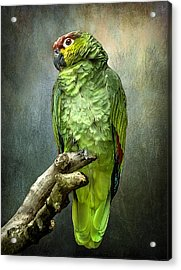 Acrylic Print featuring the photograph Forty Shades Of Green by Brian Tarr