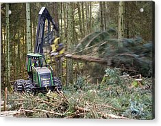 Forwarder Forestry Vehicle Acrylic Print by Ashley Cooper