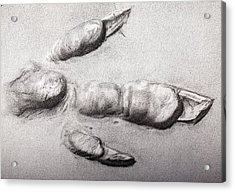 Fossil Dinosaur Track Acrylic Print