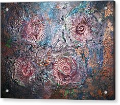 Fossils 1 Acrylic Print by Carol Rowland
