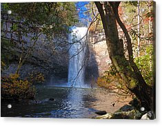Foster Falls 1 Acrylic Print by Dale Wilson