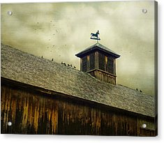 Foul Weathered Roost Acrylic Print