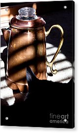 Acrylic Print featuring the photograph Found In A Sunbeam by Lawrence Burry