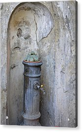 Fountain In A Corner Of S. Luce Acrylic Print by Daniele Fedi