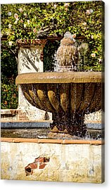 Acrylic Print featuring the photograph Fountain Of Beauty by Peggy Hughes
