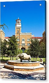 Acrylic Print featuring the photograph Fountain Of Knowledge by Mae Wertz