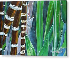 Four Canes For Green Acrylic Print