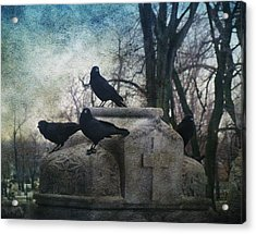 Four Graveyard Crows Acrylic Print by Gothicrow Images