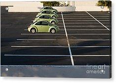 Four Green Beetles Acrylic Print