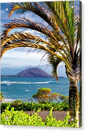 Four Seasons 110 Acrylic Print by Dawn Eshelman