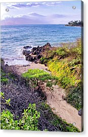 Four Seasons 125 Acrylic Print by Dawn Eshelman